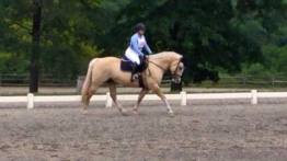 May Dressage 2